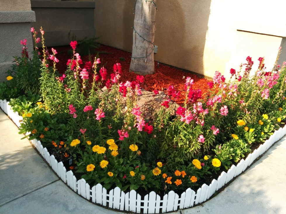 Front-2-Bakersfield-Care-Home